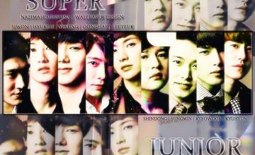 Super Junior Wallpaper 2015