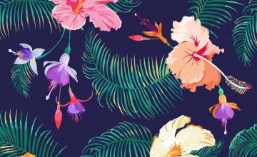 Supreme iPhone Teal Wallpaper