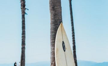 Surfboards Wallpaper