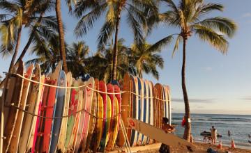 Surfing Beach Desktop Backgrounds