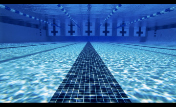Swimming Pics for Wallpaper