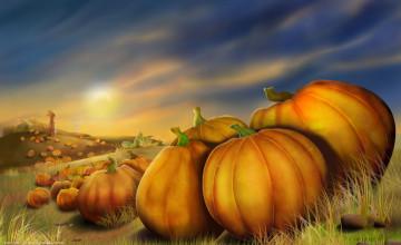 Thanksgiving Day Pumpkin Wallpapers