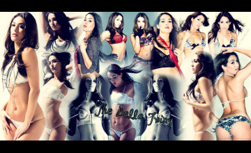 The Bella Twins Wallpaper