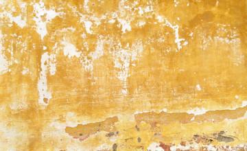 The Yellow Wallpaper Feminist Approach