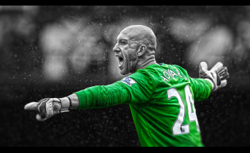 Tim Howard Wallpapers