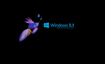 Toshiba Wallpaper Windows 8.1