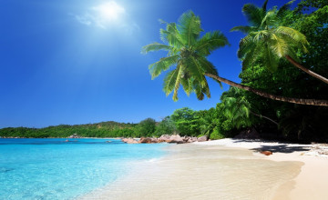 Tropical Beach Screensavers and Wallpaper