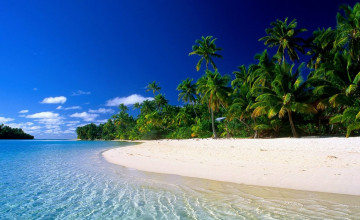 Tropical Beach Wallpaper Free Downloads
