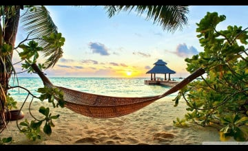 Tropical HD Wallpapers 1080p