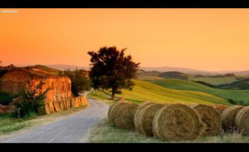 Tuscan Wallpaper