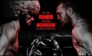 UFC 229 Wallpapers