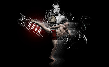 Ufc Wallpapers