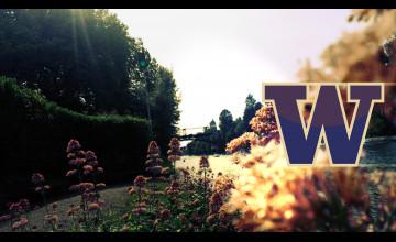 University of Washington Desktop Wallpaper