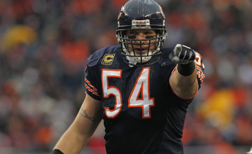 Urlacher Wallpaper