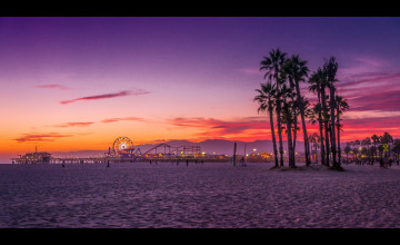Venice Beach Wallpaper Large