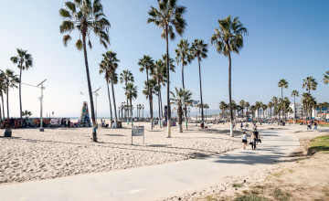 Venice Beach Wallpaper MacBook
