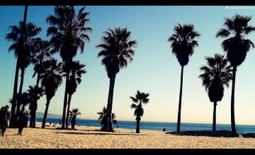 Venice Beach Wallpapers