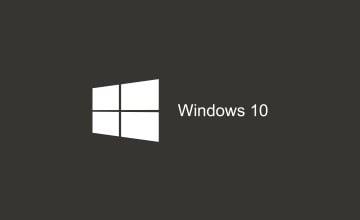 Video Wallpaper for Windows 10
