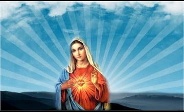 Virgin Mary Wallpaper
