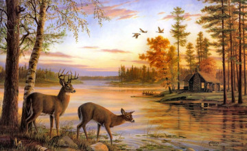 Wallpaper Deer and Cabin