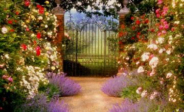 Wallpaper Gate