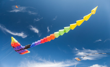 Wallpaper Of Flying Kite