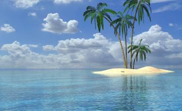 Wallpaper Palm Trees