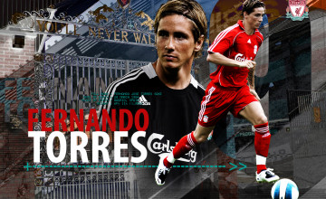 Wallpapers Of Fernando Torres