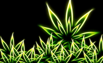 Wallpapers of Weed