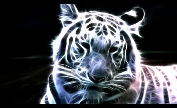 35 Tiger Backgrounds On Wallpapersafari