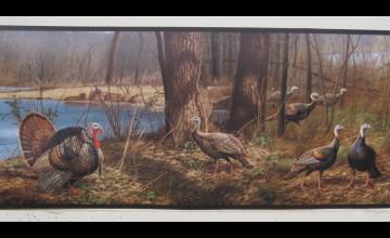 Wild Turkey Wallpaper Borders