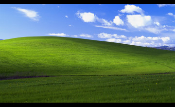 Windows 10 1440p Wallpaper