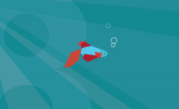 Windows 8 Beta Fish Wallpaper
