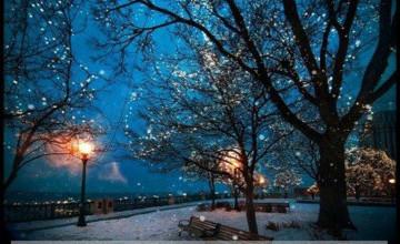 Winter Night Scenes Wallpaper