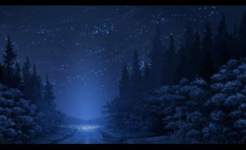 Winter Night Sky Wallpaper