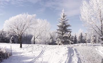 Winter Photographs Wallpaper