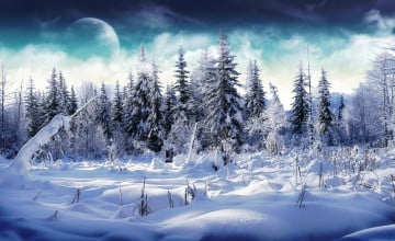 Winter Pictures For Wallpaper