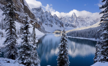 Winter Snow Desktop Wallpaper