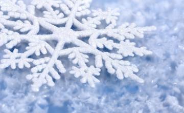 Winter Snow Wallpaper Background