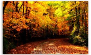Wisconsin Autumn Wallpaper