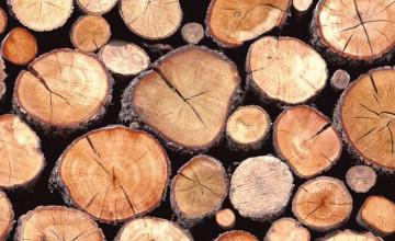 Wood Log Wallpaper