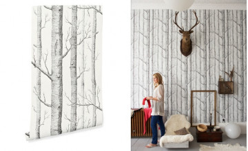Woods Wallpaper Cole and Sons