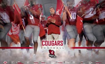 WSU Cougar Football Wallpaper