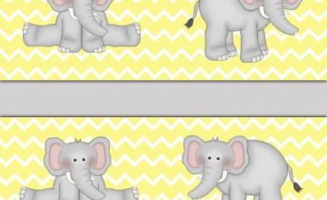 Yellow and Gray Wallpaper Border