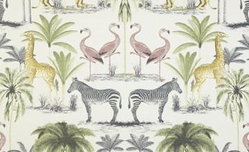 Zoology Wallpaper
